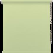 Pistachio Green Roller Blind